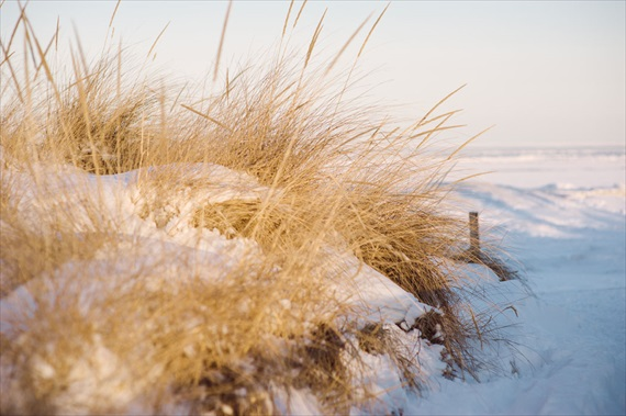Duluth winter wedding - LaCoursiere Photography - duluth winter wedding