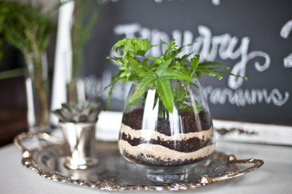 terrariums for weddings