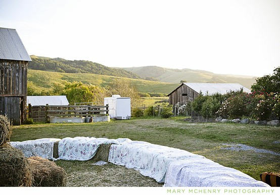 hay bales for wedding