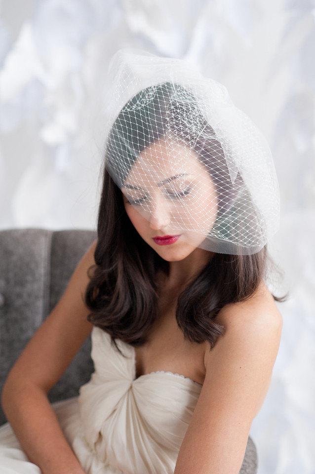 glamorous double layered birdcage veil