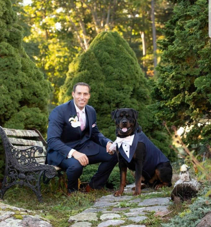 dog tuxedo for weddings