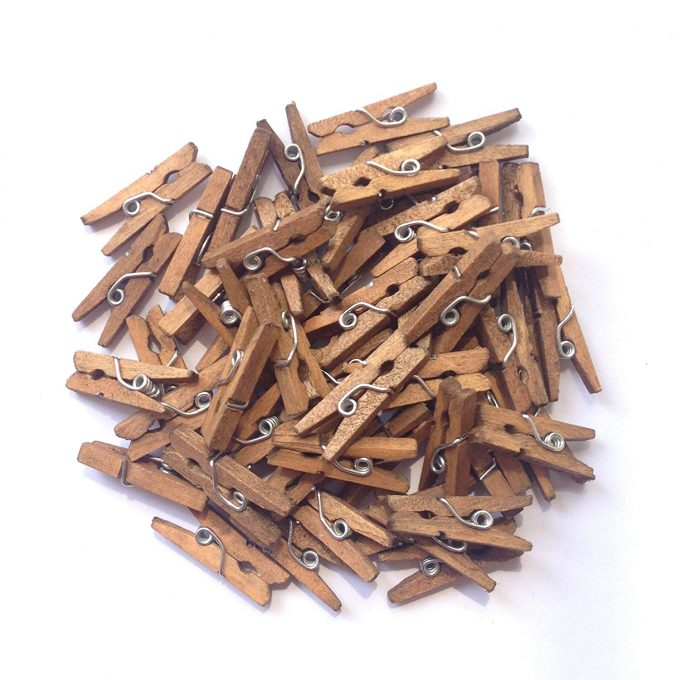 please be seeded wedding clothespins