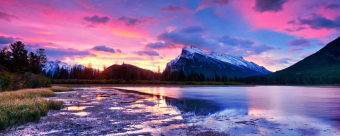 view of alberta banff via traveler's joy