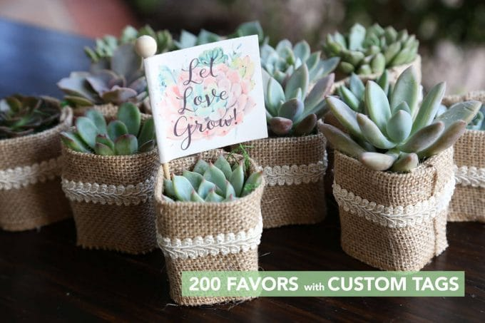 best bridal shower favors