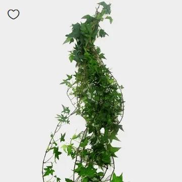 greenery in bulk for weddings