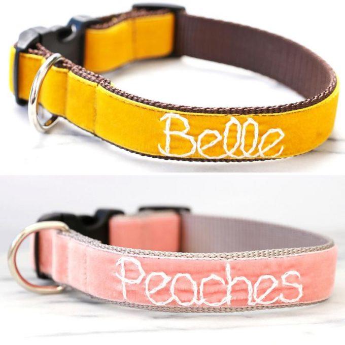 velvet collar for dogs