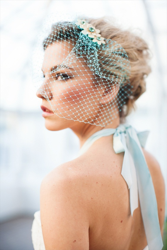 Blue Birdcage Veil - The Rizy Rose