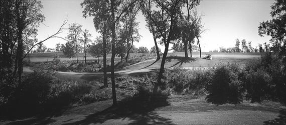 Matthew Steed Wilson Photography - Coyote Creek Golf Course wedding - scrabble themed wedding