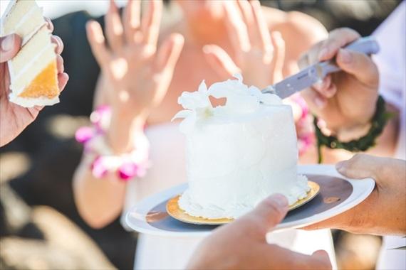 Maui-beach-wedding-ardolino-photography-emmaline-bride-15