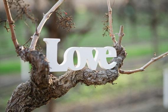 Salem-Oregon-wedding-photographer - The Vineyard Club weddings