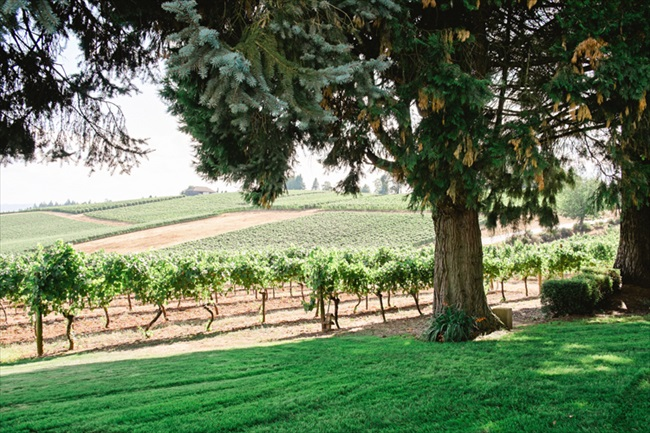 Wine-country-Farm-Oregon-Wedding-Photographer-23