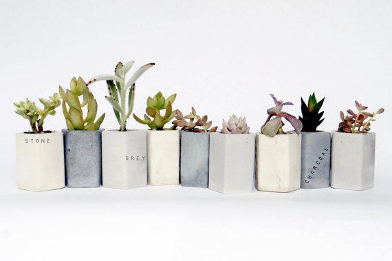 concrete planters for cactus weddings by encave