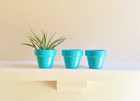 50 Best Bridal Shower Favor Ideas: mini planter pots (by redstone works)