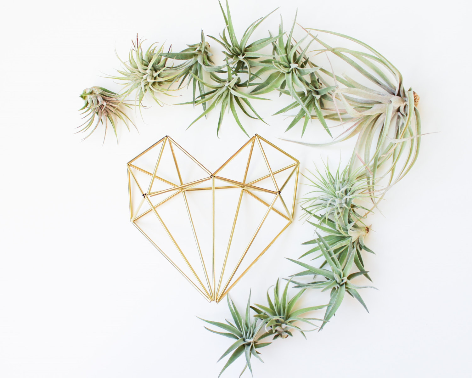 Air Plant Wedding Decor | https://emmalinebride.com/decor/air-plant-wedding-decor/