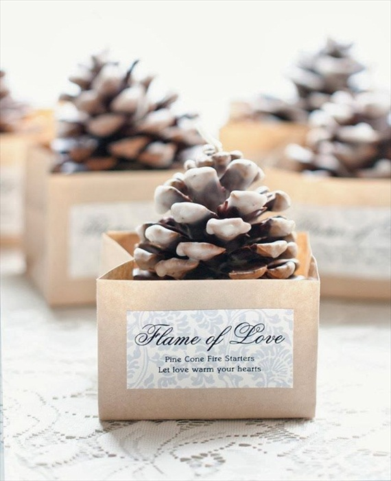 Easy Wedding DIYs - diy pinecone firestarter favors