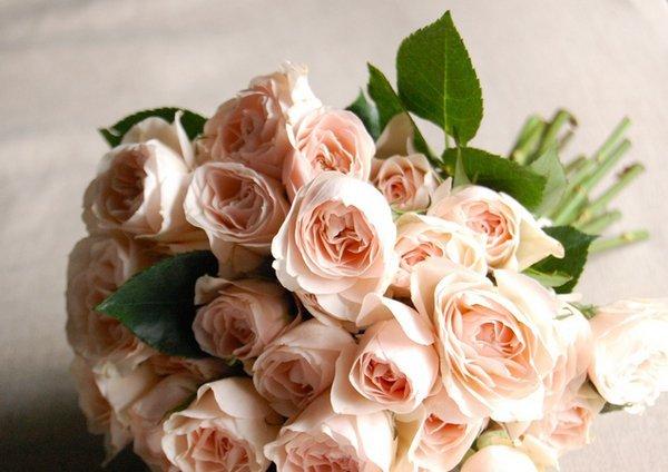 rose wedding bouquet - diy | rose bouquets weddings via https://emmalinebride.com/bouquets/rose-bouquets-weddings/