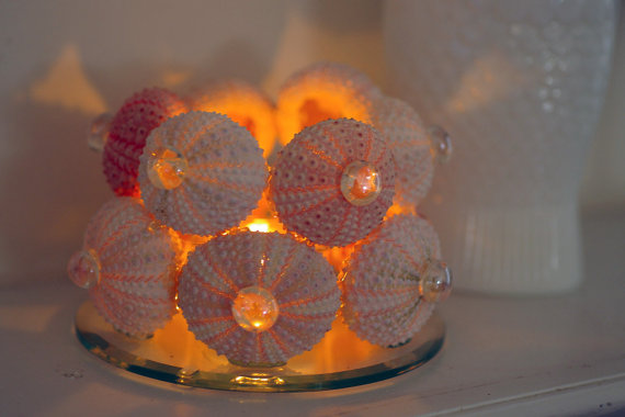 10 Beach Wedding Centerpieces via EmmalineBride.com - sea urchin candle holder by By The Seashore