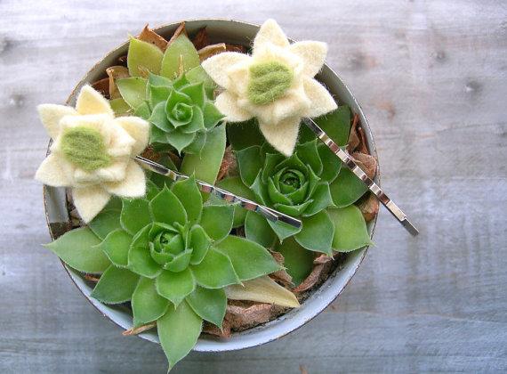 succulent hair clips