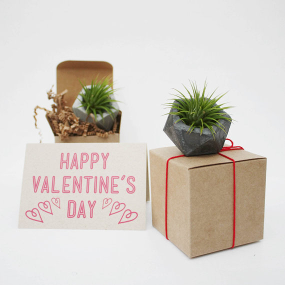 20 Valentines Day Gift Ideas - succulent in geometric planter