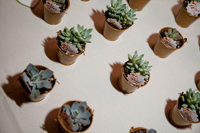 succulents - Maryland Handmade Wedding
