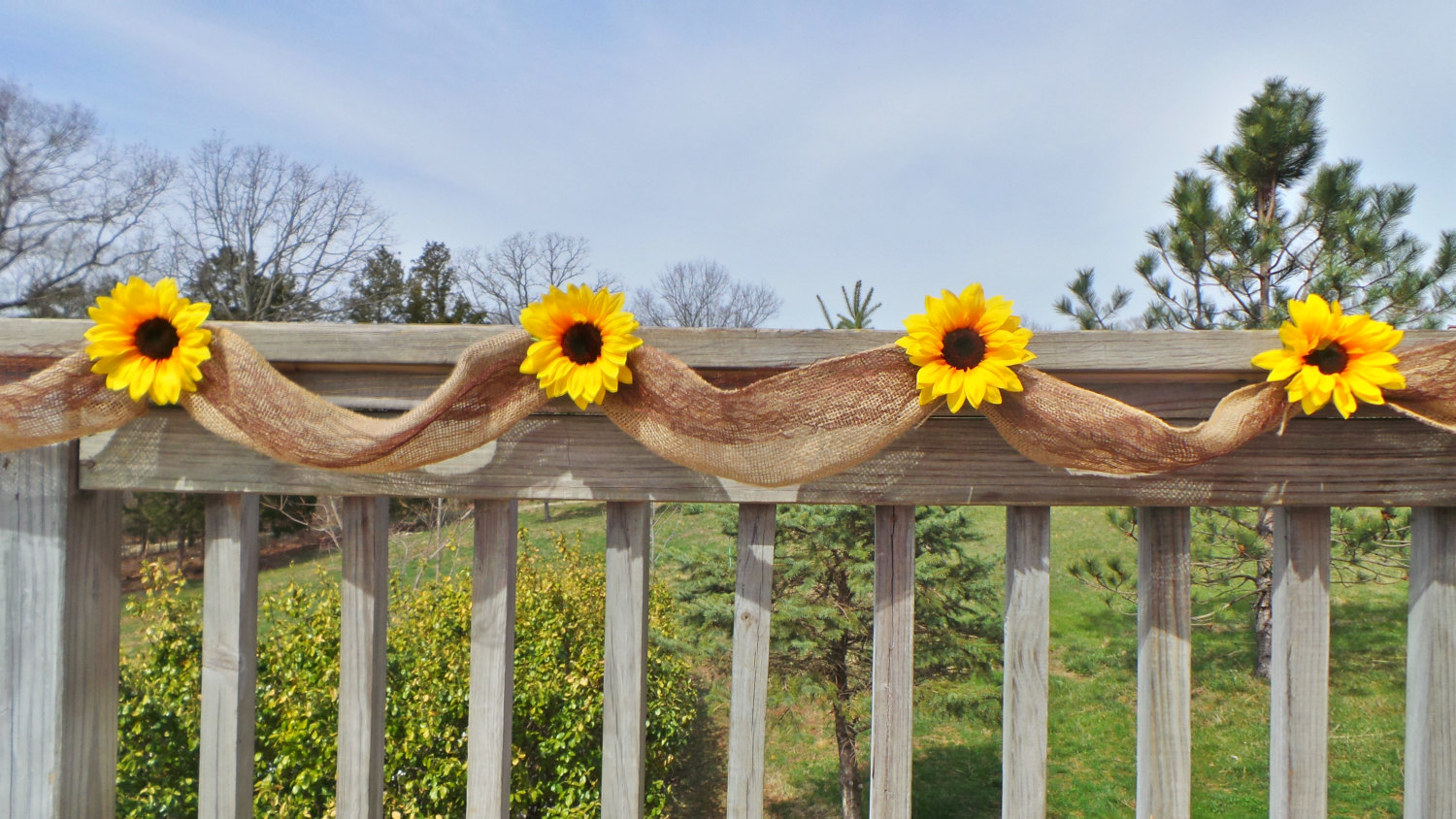 sunflower banner by jcbees
