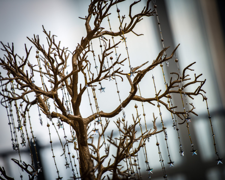 wedding wish tree | Nature Inspired Wedding Ideas